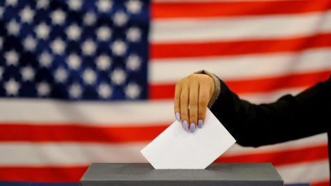 Vote! Vote! Vote!